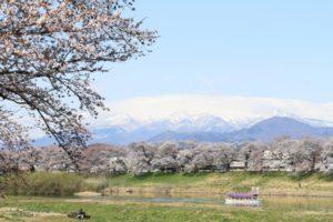 一目千本桜と蔵王山
