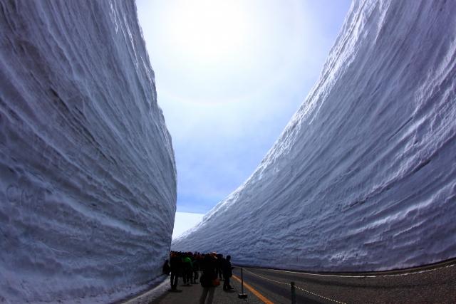 アルペンルート 雪の大谷