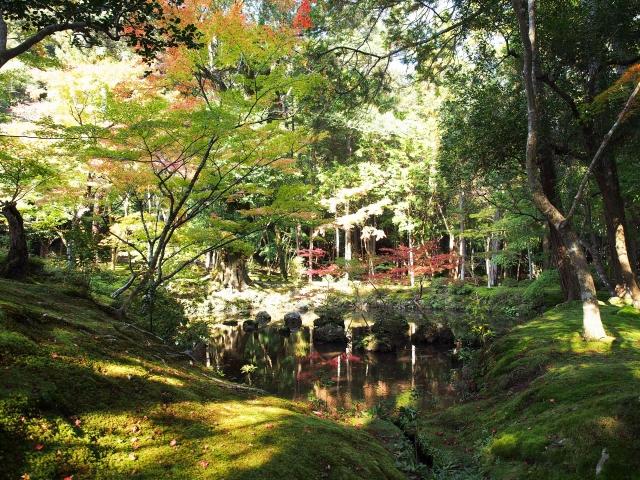 西芳寺(苔寺)(京都市)